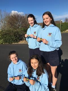 Leinster Badminton Finals